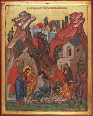 Jesus Healing Many Diseases